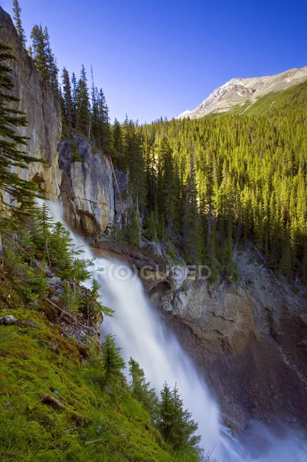 Panther Falls waterfall in mountains of Banff National Park, Alberta, Canada — Stock Photo