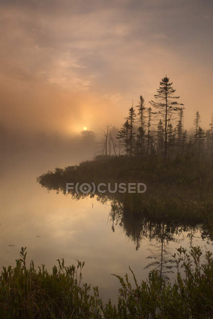 Matin brumeux paysages automnaux sur Highland Pond, Torrance Barrens, Muskoka, Ontario — Photo de stock