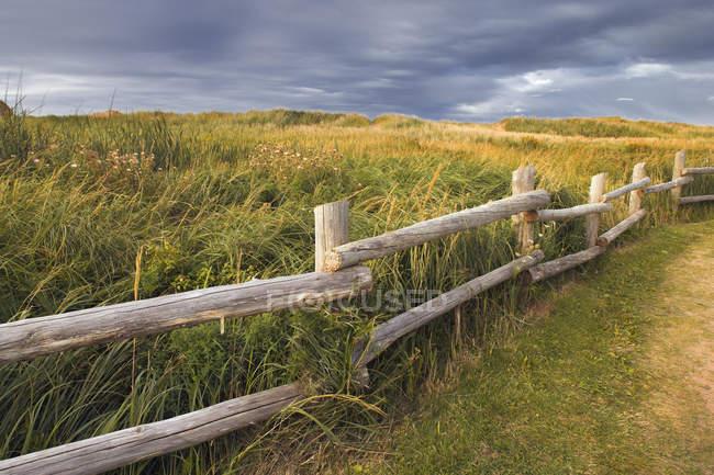 Сельский забор на пляже Принца Эдуарда в Кавендише, Канада . — стоковое фото