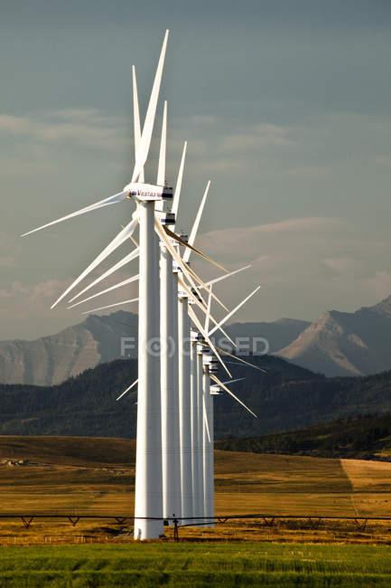Генерации мощности ветряных мельниц в луг Пинчер-Крик, провинция Альберта, Канада. — стоковое фото
