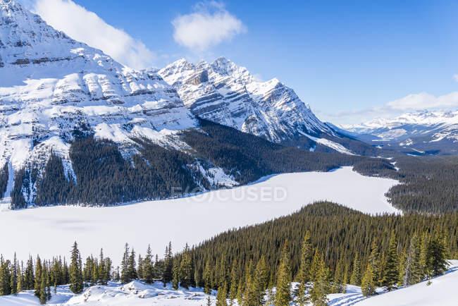 Lago congelado Peyto no inverno no Parque Nacional de Banff, Alberta, Canadá — Fotografia de Stock