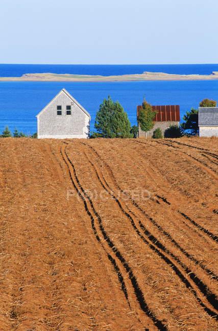 Полевые и фермерские дома с морской набережной около Френч-Ривер, Остров Принца Эдуарда, Канада — стоковое фото