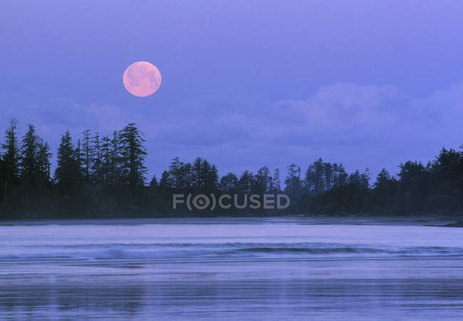 Moon setting over Schooner Cove, Pacific Rim National Park, Vancouver Island, British Columbia, Canada — Stock Photo