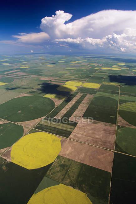 Vista aérea de campos e fazendas de Alberta, Canadá . — Fotografia de Stock
