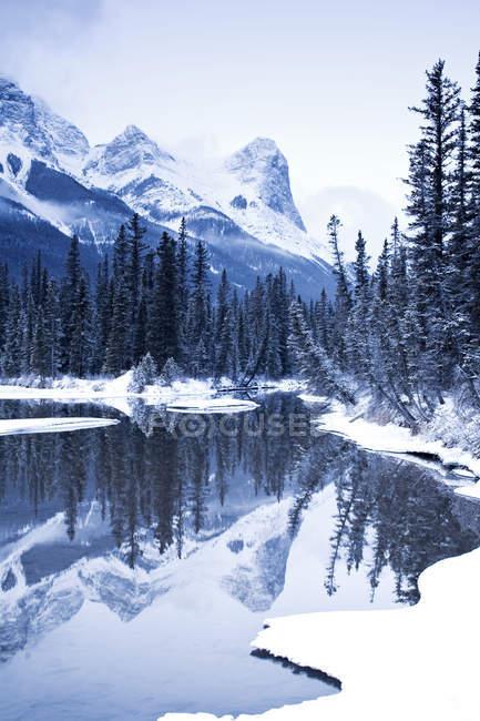 Ха-Линг пик и горное озеро в лесу вблизи Canmore, Альберта, Канада — стоковое фото