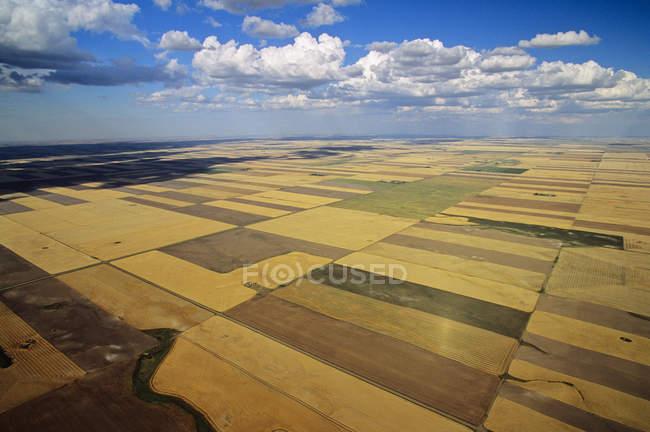 Cenário rural aéreo de terras agrícolas de saskatchewan, Canadá . — Fotografia de Stock