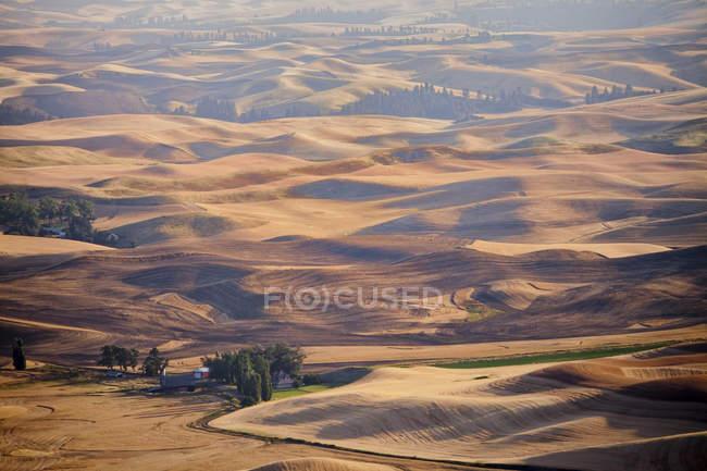 Felder von Ackerland in Palouse Region des östlichen Washington State, Vereinigte Staaten. — Stockfoto
