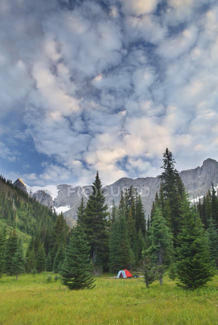 Zelt am CP am Rockwall und Tumbling Gletscher des Kootenay National Park, Britisch-Kolumbien, Kanada — Stockfoto