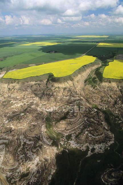Пташиного польоту badlands з сільськогосподарські угіддя в ландшафті Альберта, Канада. — стокове фото