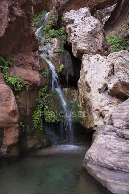 Spring-fed waterfall near Colorado River, Grand Canyon, Arizona, USA — Stock Photo