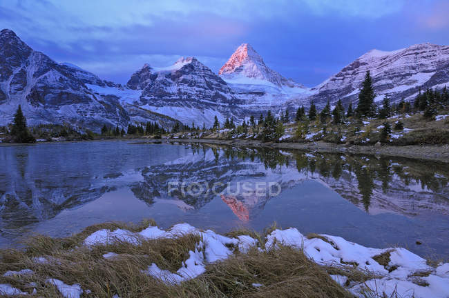 Mount Assiniboine reflected in pond at dawn, Mount Assiniboine Provincial Park, Canada — Stock Photo