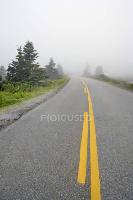 Дорога вздовж озера Вікторія в туман поблизу західного голову, Нова Шотландія, Канада. — стокове фото