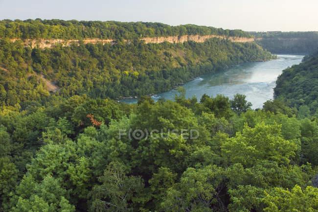 Fiume Niagara nel paesaggio della Riserva Naturale del Niagara Glen, Cascate del Niagara, Ontario, Canada — Foto stock