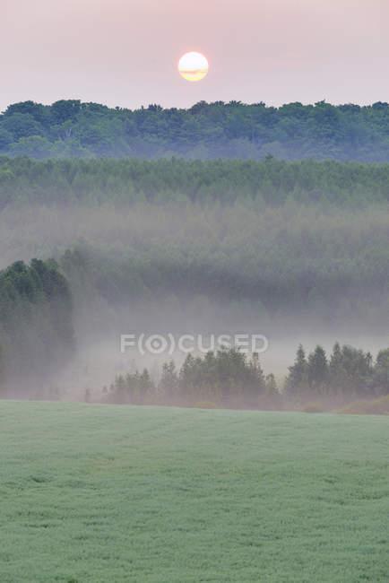 Sunrise over misty rural landscape of Mono Hills, Niagara Escarpment, Ontario, Canada — Stock Photo
