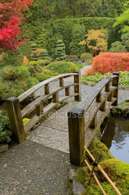Pequeño puente sobre el arroyo en el jardín japonés otoñal, Butchart Gardens, Brentwood Bay, Columbia Británica, Canadá - foto de stock