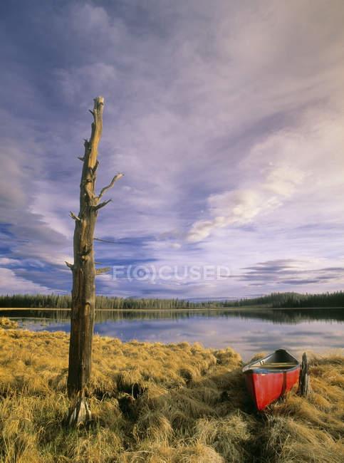 Canoe moored on grassy shore of Boggy Lake near Cremona, Alberta, Canada — Stock Photo