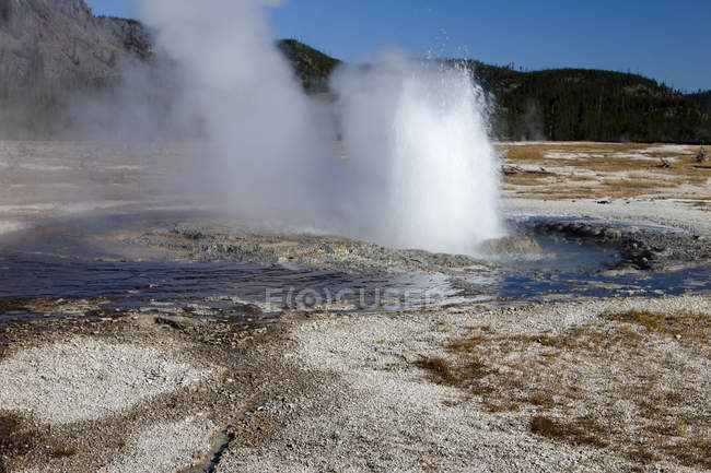Eruption of Jewel Geyser, Biscuit Geyser Basin, Yellowstone National Park, Wyoming, USA — Stock Photo