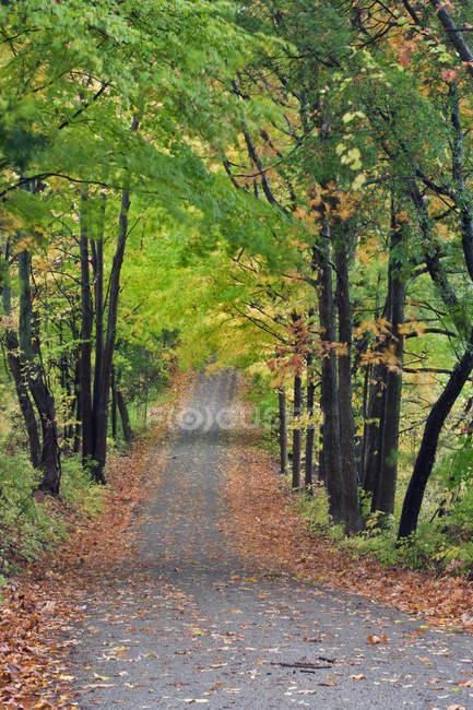Orchard Hill Road in autumn, Pelham, Ontario, Canada — Stock Photo
