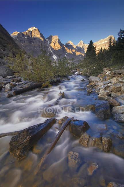 Eau courante de la rivière forestière au lac Moraine, parc national Banff, Alberta, Canada . — Photo de stock