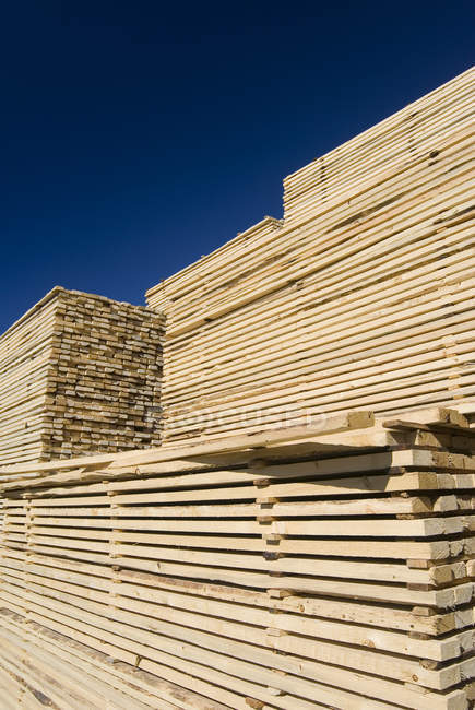 Stacked wood drying in lumber yard of lumber mill. — Stock Photo