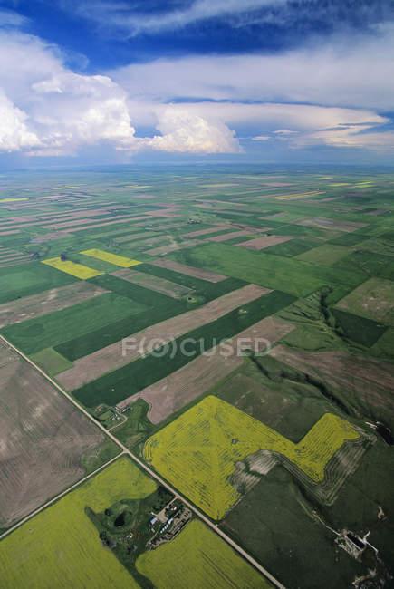 Вид з поля та фермерських господарств у сільській краєвид з Альберти, Канада. — стокове фото