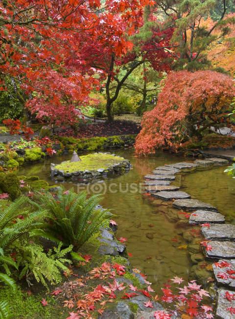 Fogliame autunnale e percorso attraverso il torrente nel giardino giapponese, Butchart Gardens, Brentwood Bay, Columbia Britannica, Canada — Foto stock