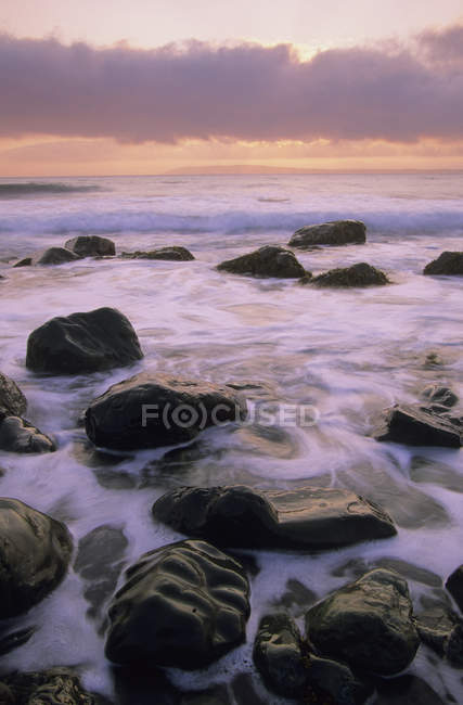 Захід сонця на скелястий берег Mistaken точку, Авалон півострова, Сполучені Штати Америки. — стокове фото