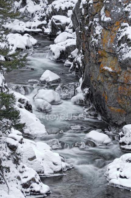 Insenatura innevata all'interno del canyon vicino a Manning Park nella Columbia Britannica, Canada . — Foto stock