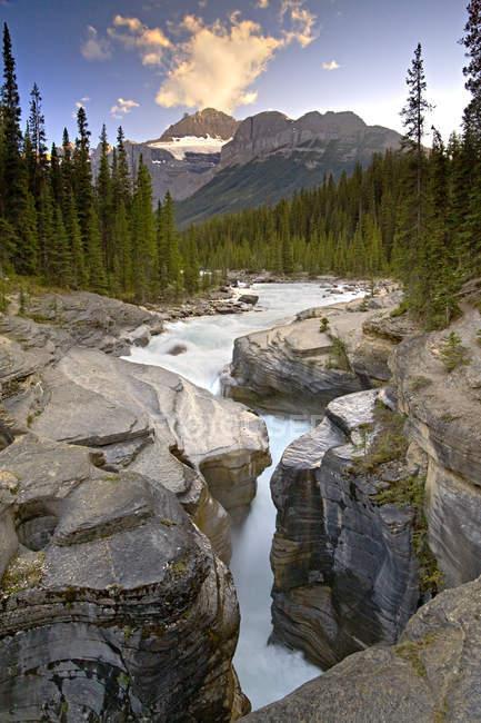 Река течет в скалах Mistaya Каньон, Национальный парк Банф, Альберта, Канада. — стоковое фото