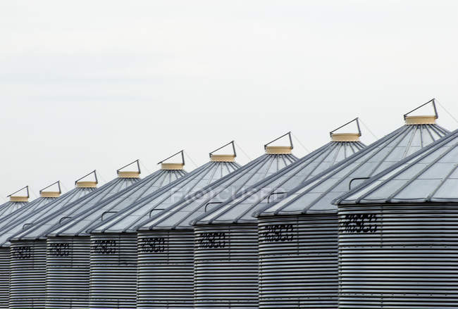 Row of metal granaries near Calgary, Alberta, Canada — Stock Photo