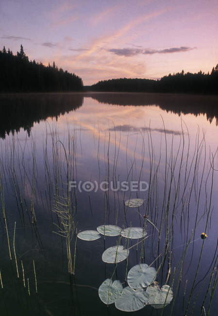 Two Mile Lake at Duck Mountain Provincial Park, Manitoba, Canadá - foto de stock