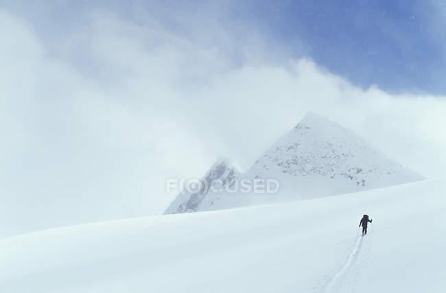 Ski d'homme dans le col de Rogers, Colombie-Britannique, Canada. — Photo de stock