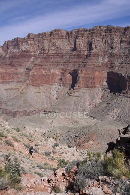 Man hiking at Tanner Trail, Colorado River, Grand Canyon, Arizona, Estados Unidos da América — Fotografia de Stock