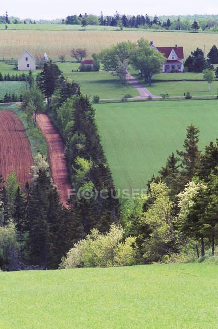 Gently rolling farmland on Prince Edward Island, Canada. — Stock Photo