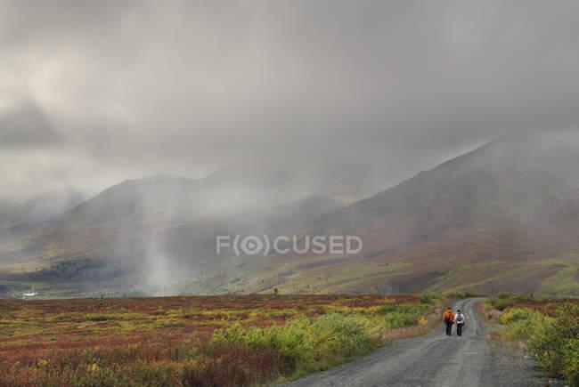 Путешественники на туманном участке дороги, Территориальный парк Томбстоун, территория Yukon, Канада — стоковое фото