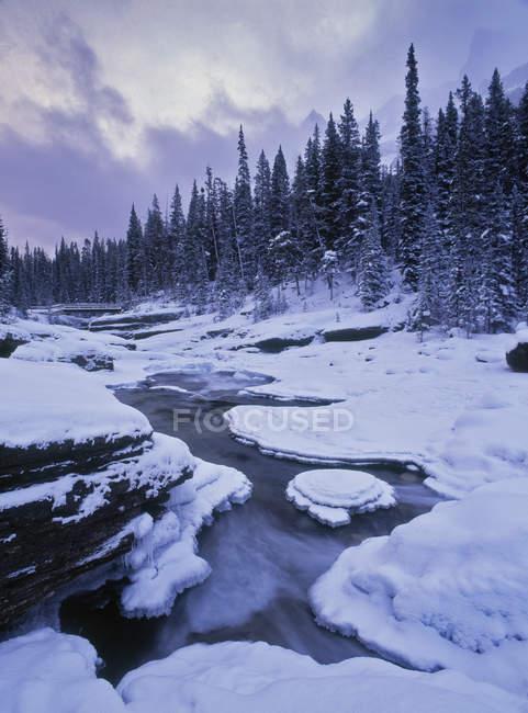 Mistaya Canyon et la rivière gelée en hiver, le Parc National Banff, Alberta, Canada. — Photo de stock