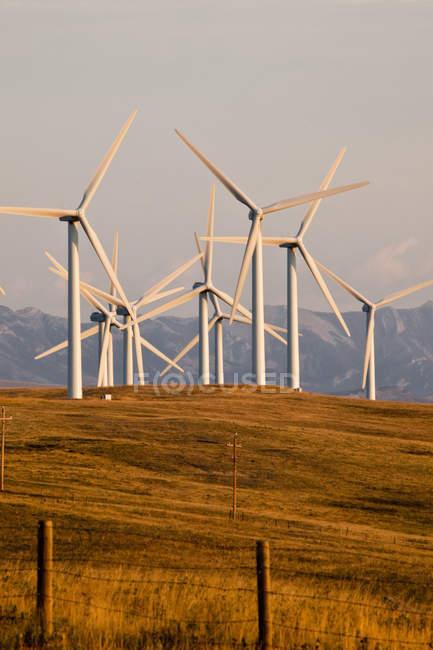 Установки ветроэнергетические мощности вблизи Пинчер-Крик, провинция Альберта, Канада. — стоковое фото