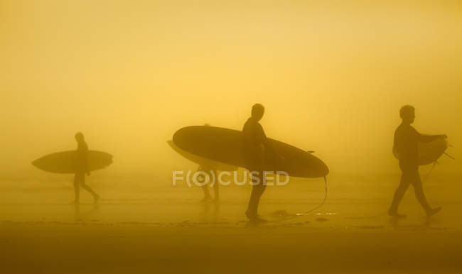 Silhouettes of surfers in fog, Long Beach, Pacific Rim National Park, Vancouver Island, British Columbia, Canada — Stock Photo
