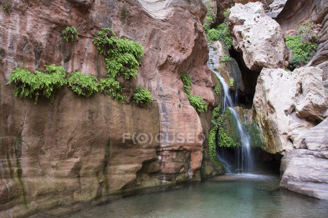 Cascata alimentata a primavera vicino al fiume Colorado, Grand Canyon, Arizona, USA — Foto stock