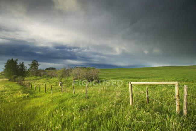 Грозовые тучи над зеленым пастбищем возле Кокрейна, Альберта, Канада — стоковое фото