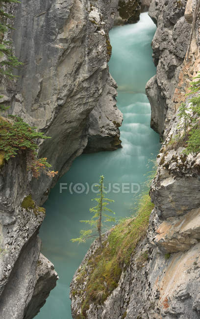 High angle view of river in Cline River Canyon, Bighorn Wildlands, Alberta, Canada — Stock Photo