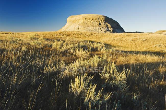 Живописный вид на освещенные солнцем рок и равнины, лугопастбищные угодья национального парка — стоковое фото