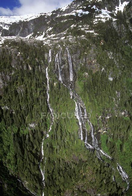 Аэрофотоснимок делла падает Strathcona Провинциальный парк, Остров Ванкувер, Британская Колумбия, Канада. — стоковое фото