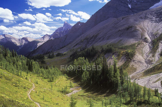Tumbling Pass on Rockwall Pass trail, Kootenay National Park, British Columbia, Canada. — Stock Photo