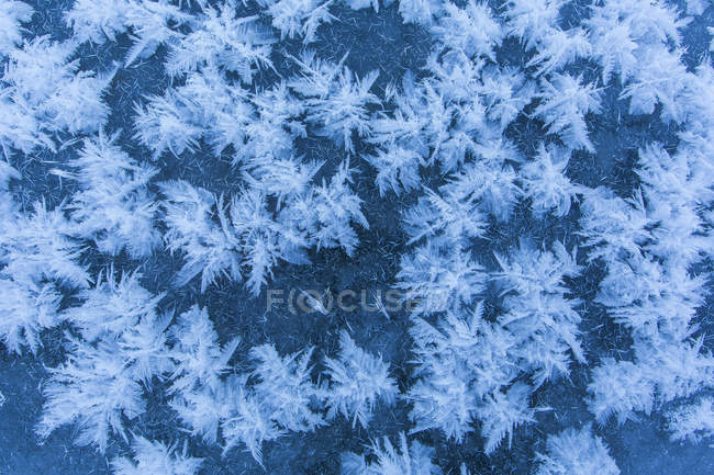 Ice crystals pattern on ice of lake in winter — Stock Photo