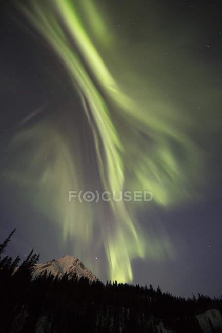 Niedrigen Winkel Ansicht der Nordlichter am Nachthimmel außerhalb Whitehorse, Yukon, Kanada. — Stockfoto