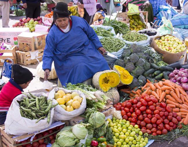 Femme de la région en scène marché de Puno, lac Titicaca, Pérou — Photo de stock