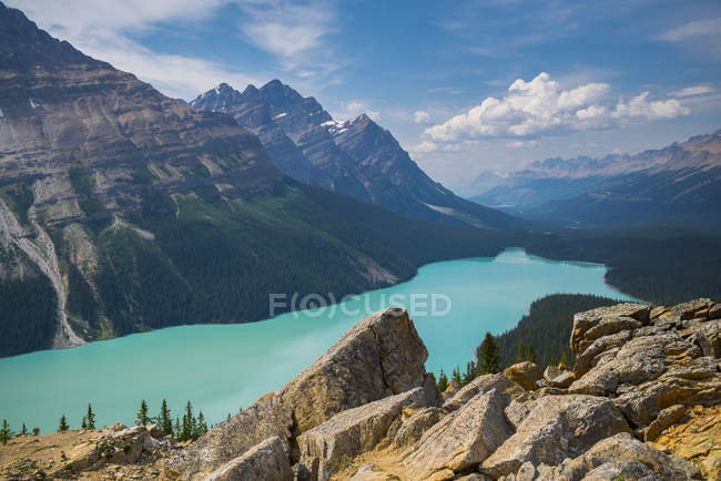 Aerial view of coniferous forest and mountains by Peyto Lake, Banff National Park, Alberta, Canada — Stock Photo