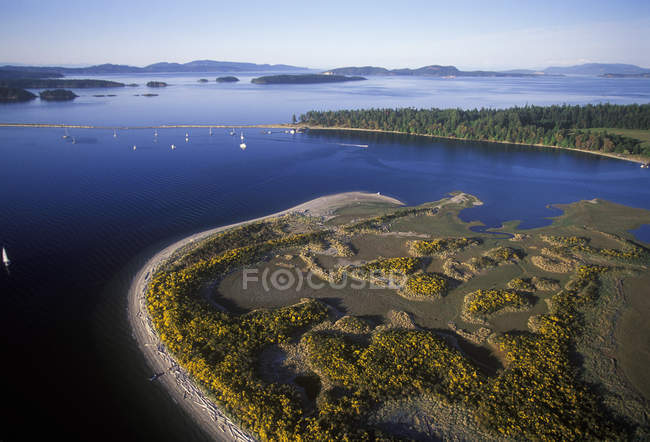 Aerial view of sailboats at Sidney Spit of Vancouver Island, British Columbia, Canada. — Stock Photo