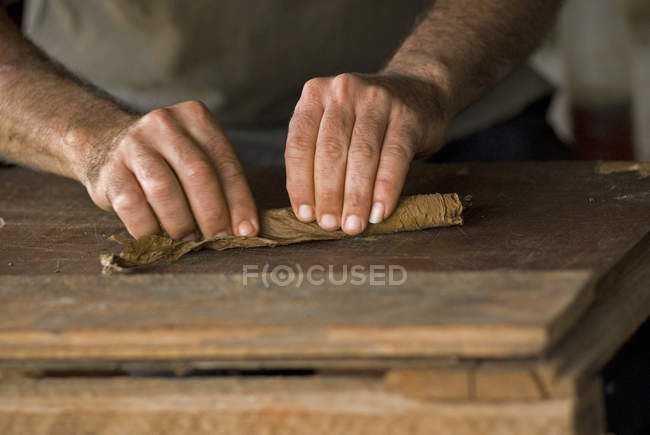 Close-up of male hands rolling cigar in Vinales, Cuba — Stock Photo